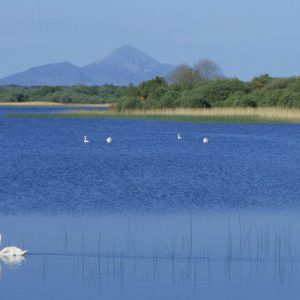 View across Lough Lannagh to Croagh Patrick