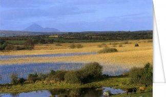 Panoramic View to Croagh Patrick