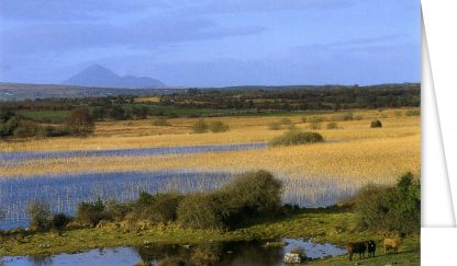 Panoramic View to Croagh Patrick