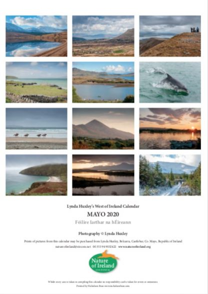 2020 Mayo calendar images by month