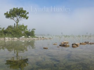 Lough Carra Morning Mist Print